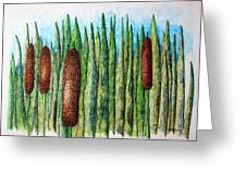 Cattails 1 Greeting Card