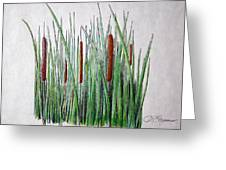 Cattails 3 Greeting Card