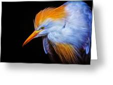 Cattle Egret Electrified Greeting Card