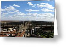 Cattle Pens Greeting Card