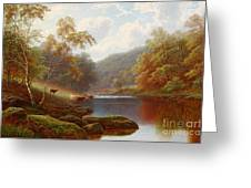 Cattle Watering Along The River Wharfe Greeting Card