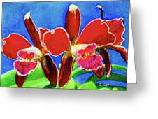 Cattleya Orchids Flowers #215 Greeting Card