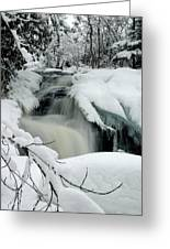 Cattyman Falls In Winter - Vertical Greeting Card