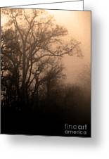 Caught Between Light And Dark Greeting Card