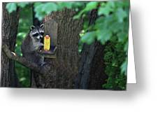 Caught In The Act Greeting Card