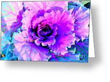 Cauliflower Abstract #8 Greeting Card