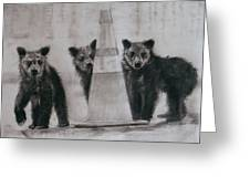Caution Bears Greeting Card