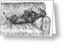 Caution Guard Dog - Doberman Pinscher Art Print Greeting Card by Kelli Swan