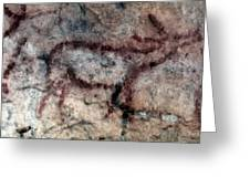 Cave Art: Covalanas Greeting Card