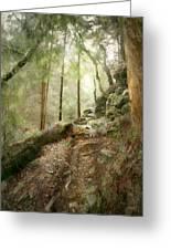 Cavern Walk ..... Greeting Card
