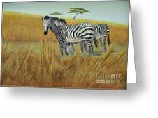 Cebras  In  Rhino  Park Greeting Card