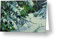 Cedar And Snow Greeting Card