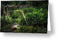 Cedar Arbor Greeting Card