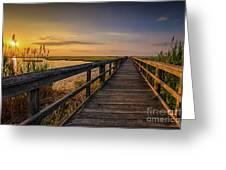 Cedar Beach Pier, Long Island New York Greeting Card