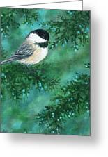 Cedar Chickadees - Bird 1 Greeting Card