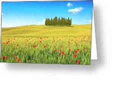 Cedar Grove And Poppies Greeting Card