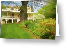 Cedar Grove In Spring Greeting Card