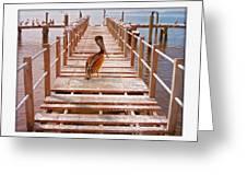 Cedar Key Wharf Greeting Card