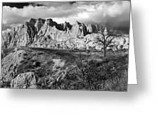 Cedar Pass Greeting Card