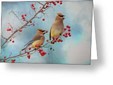 Cedar Waxwing Pair Greeting Card