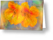 Celebration Of Life. Greeting Card