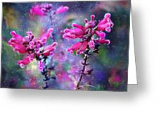 Celestial Blooms-2 Greeting Card