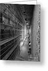 Cell Block Greeting Card