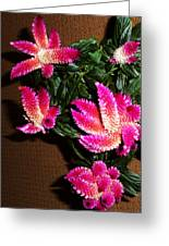 Celosia 7 Greeting Card