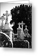 Celtic Crosses At Fuerty Cemetery Roscommon Ireland Greeting Card
