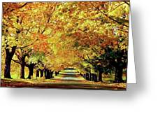 Cemetery Alley Greeting Card