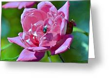 Cemetery Rose Greeting Card