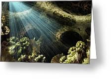 Cenote II Greeting Card