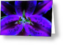Center Of The Asiatic Lily Greeting Card