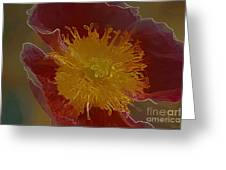 Center Of Yellow Greeting Card