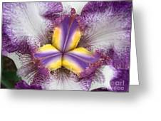 Centered Greeting Card
