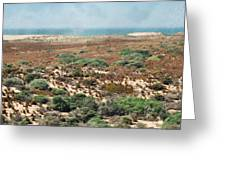 Central Coast Sand Dunes II Greeting Card