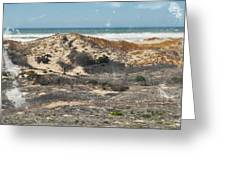 Central Coast Sand Dunes Greeting Card