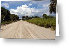 Central Florida Back Road Greeting Card
