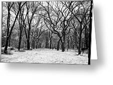 Central Park 1 Greeting Card by Wayne Gill