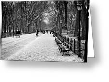 Central Park 2 Greeting Card