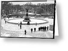 Central Park 5 Greeting Card