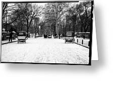 Central Park 7 Greeting Card