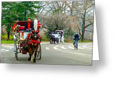 Central Park Horse And Buggy Rides New York City Greeting Card