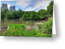 Central Park Greeting Card by Kelly Wade
