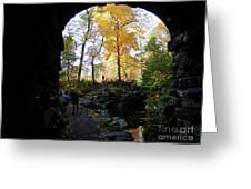 Central Park North Woods In The Fall Greeting Card