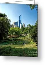 Central Park Ny Greeting Card
