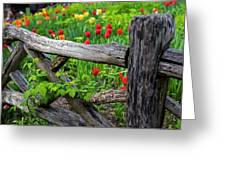 Central Park Shakespeare Garden New York City Ny Wooden Fence Greeting Card