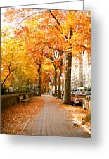 Central Park West Greeting Card by Ariane Moshayedi