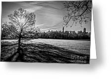 Central Park's Sheep Meadow - Bw Greeting Card