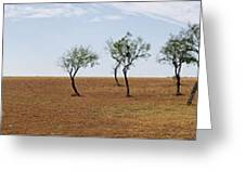 Central Texas Landscape Greeting Card